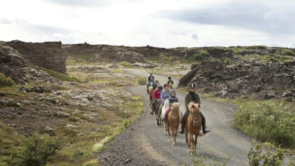 Horse riding Reykjavik